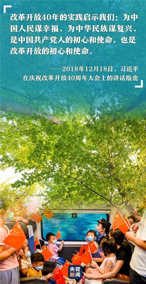 高山榕树9.jpg